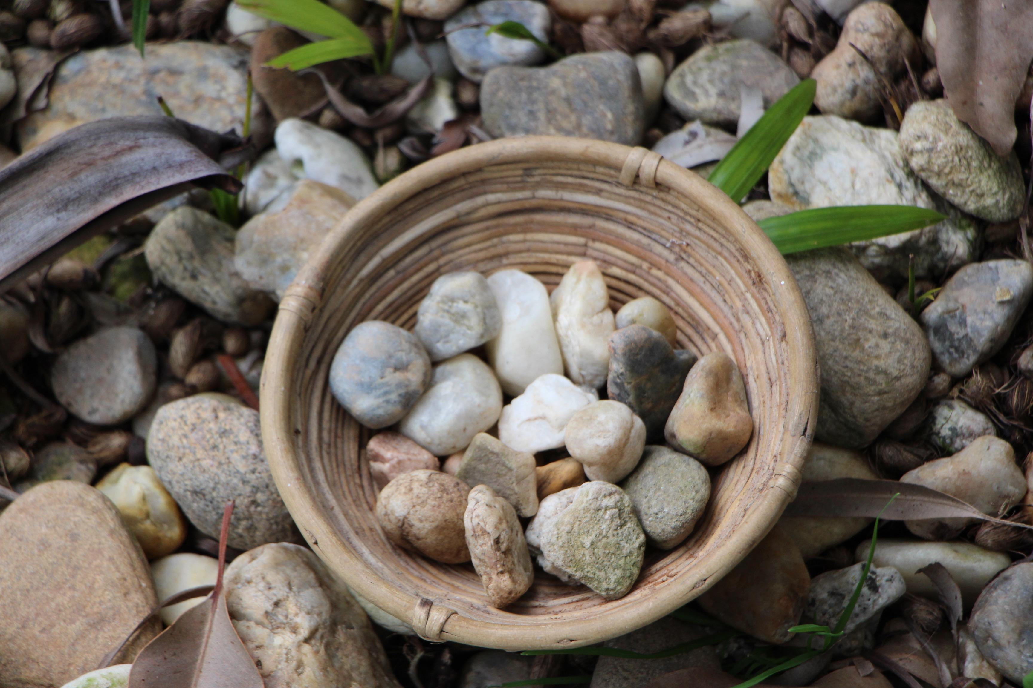 Quando surgiu a Meditação Cristã?